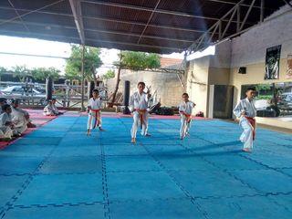 Exame de Faixa no Iguatu 2015 - Foto 17