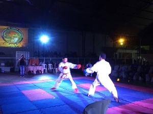 Copa Centro Sul de Karate 2016 - 44
