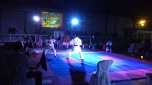 Copa Centro Sul de Karate 2016 - 62